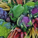 Savor the Flavors of Fall Harvest