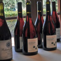 Traveling the World of Pinot