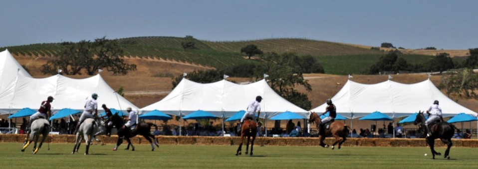 Kick-off Summer with Polo and Wine
